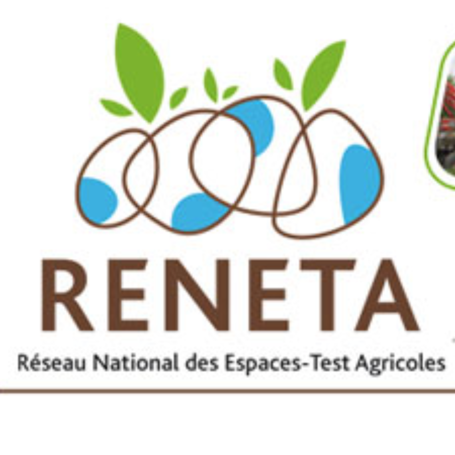 agence rencontres montpellier rennes
